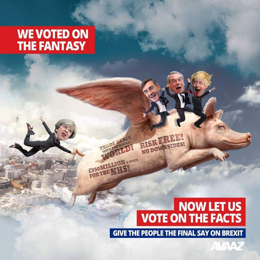 We voted on the fantasy.jpg