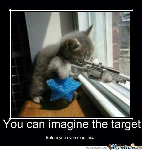 Cat with a gun.jpg