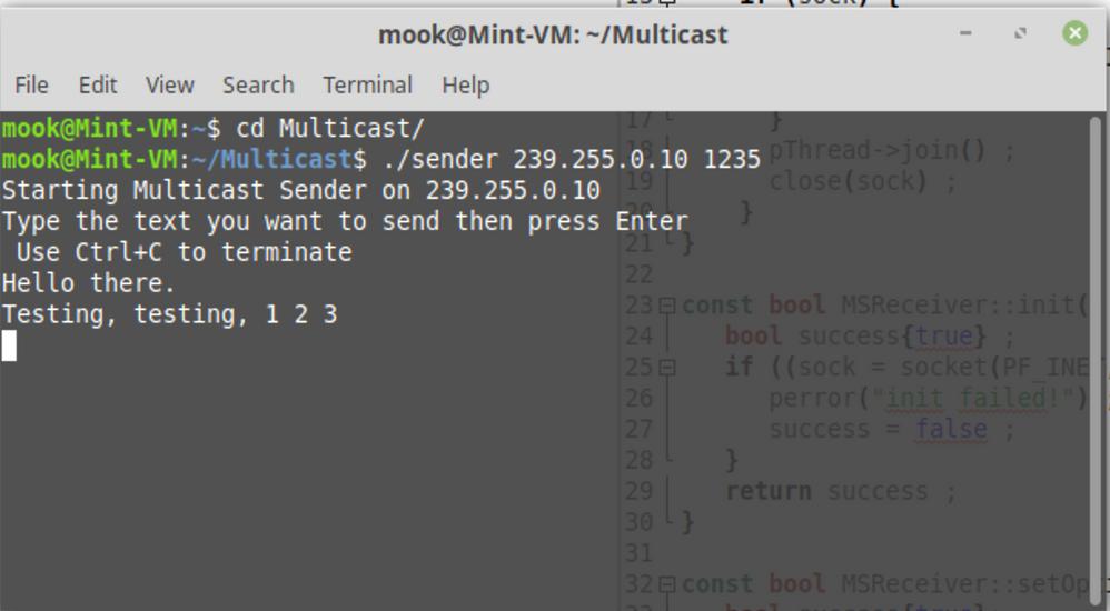 Multicast Sender on Linux