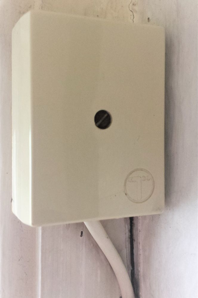 Inside connection to outside black cable from Telegraph Pole. White cable leads to Master Socket box