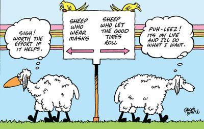 sheep (2).jpg