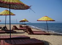 beached-1408827-1279x938.jpg