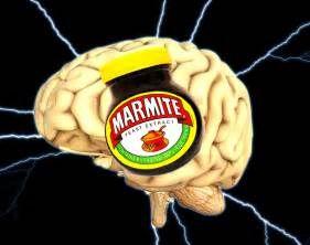 Brain Food?